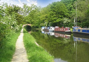 Rural scene on the Bridgewater Canal at Walton